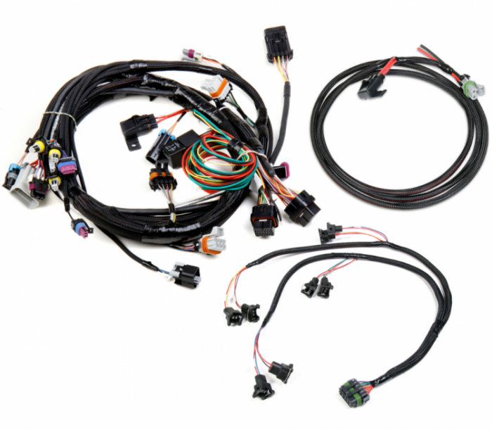 Holley GM LS EFI HARNESS KIT