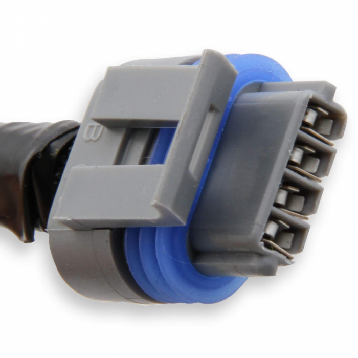 Holley LS COIL HARNESSES