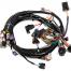 Holley LS16 (24X1X) ENGINE MAIN HARNESS