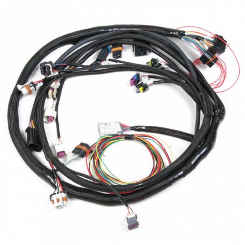 Holley LS2/3/7+ (58X/4X) ENGINE MAIN HARNESS