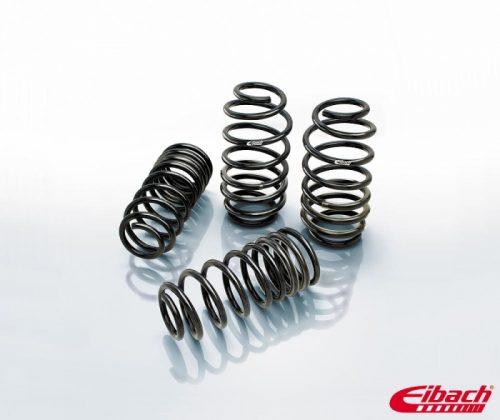 mXa Eibach Chrysler 300 Lowering Springs